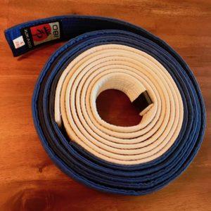 promoted to blue belt in BJJ